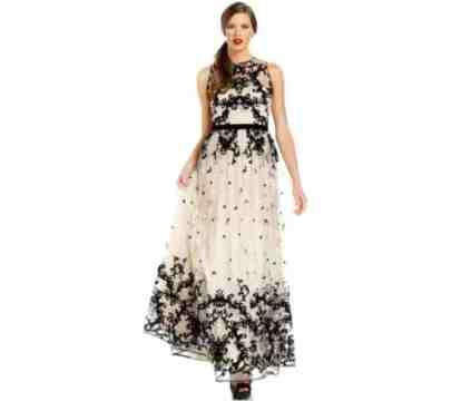 Adrianna Papell Sleeveless Velvet Embroidered Dress