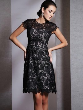 Lace A Line Small black dress with caps