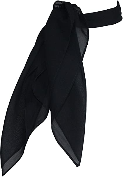Amazon.com: Sheer Chiffon Scarf Vintage Style Accessory for Women .