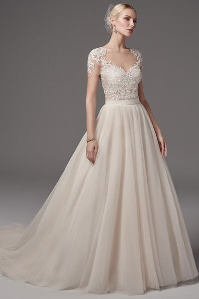 Wedding Dress Photos, Wedding Dresses Pictures in 2020 | Wedding .